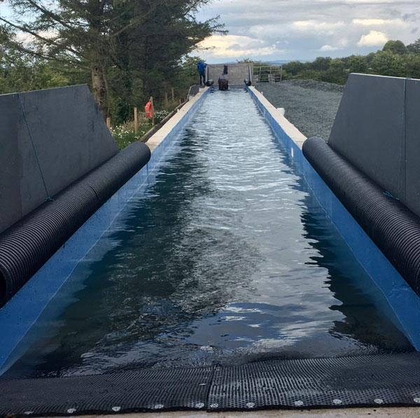 Equine Swimming Pool